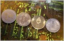 The Swiss Bankers Association unveils new guidelines for banks that could make it easier for cryptocurrency/blockchain companies to open corporate bank accounts (Brenna Hughes Neghaiwi/Reuters)