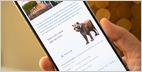 Una mirada a los animales 3D y otros objetos visibles en la Búsqueda de Google usando AR en una variedad de teléfonos inteligentes y tabletas, agregado desde la Conferencia de E / S 2019 de Google (Ben Schoon / 9to5Google) 11