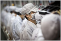 As China gets more expensive and US politics less predictable, Foxconn, Pegatron, and others are increasing production in places like India, Vietnam, and Mexico (Debby Wu/Bloomberg)