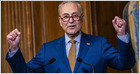 Senate passes bill providing B for domestic semiconductor manufacturing, a 30% NSF funding bump, and B for science directorate; bill now heads to House (Makena Kelly/The Verge)